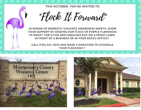 Flock it Forward flyer asking to show support for domestic violence awareness month